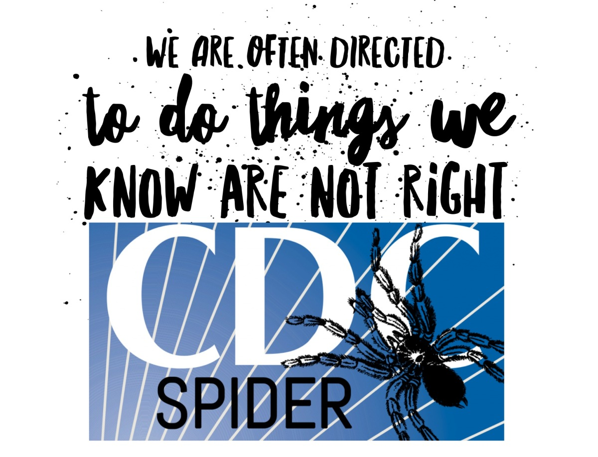 Who's Afraid of CDC SPIDERS?